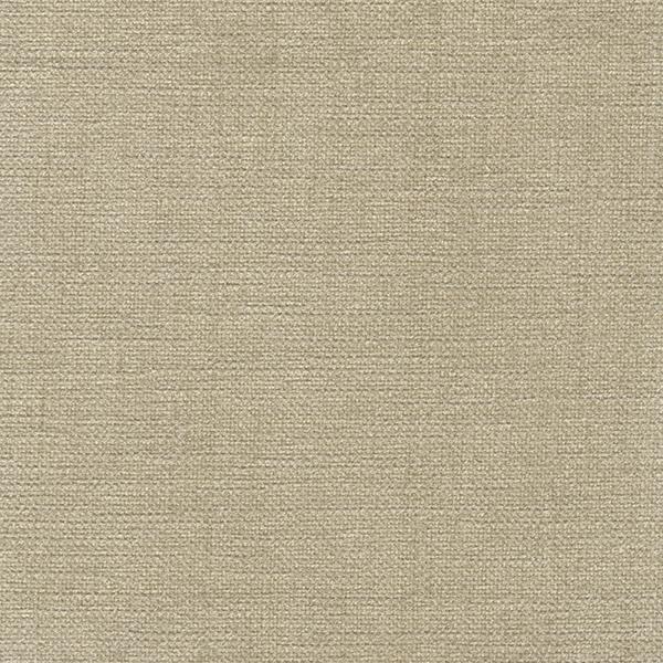 ANIMA-FR yarn 05
